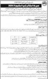 State Bank of Pakistan Merit Scholarship .educationbite.cm